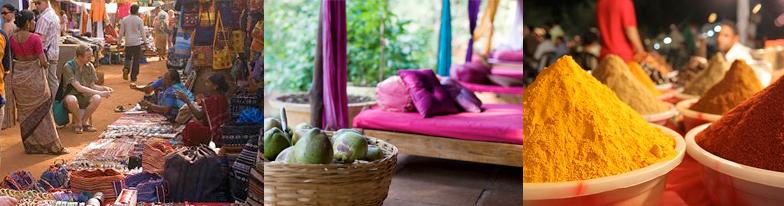 Goa - Purple Valley Retreat with Joey Miles
