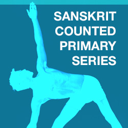 sanskrit counted led primary series cover art