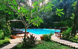 swimming pool at Purple Valley Yoga Retreat Centre in Goa