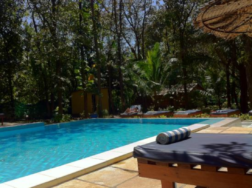 swimming pool and sun lounger at Purple Valley in Goa